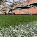 Un anno di Master: tra i fili d'erba di San Siro per scoprire i segreti dei Ground's Manager!