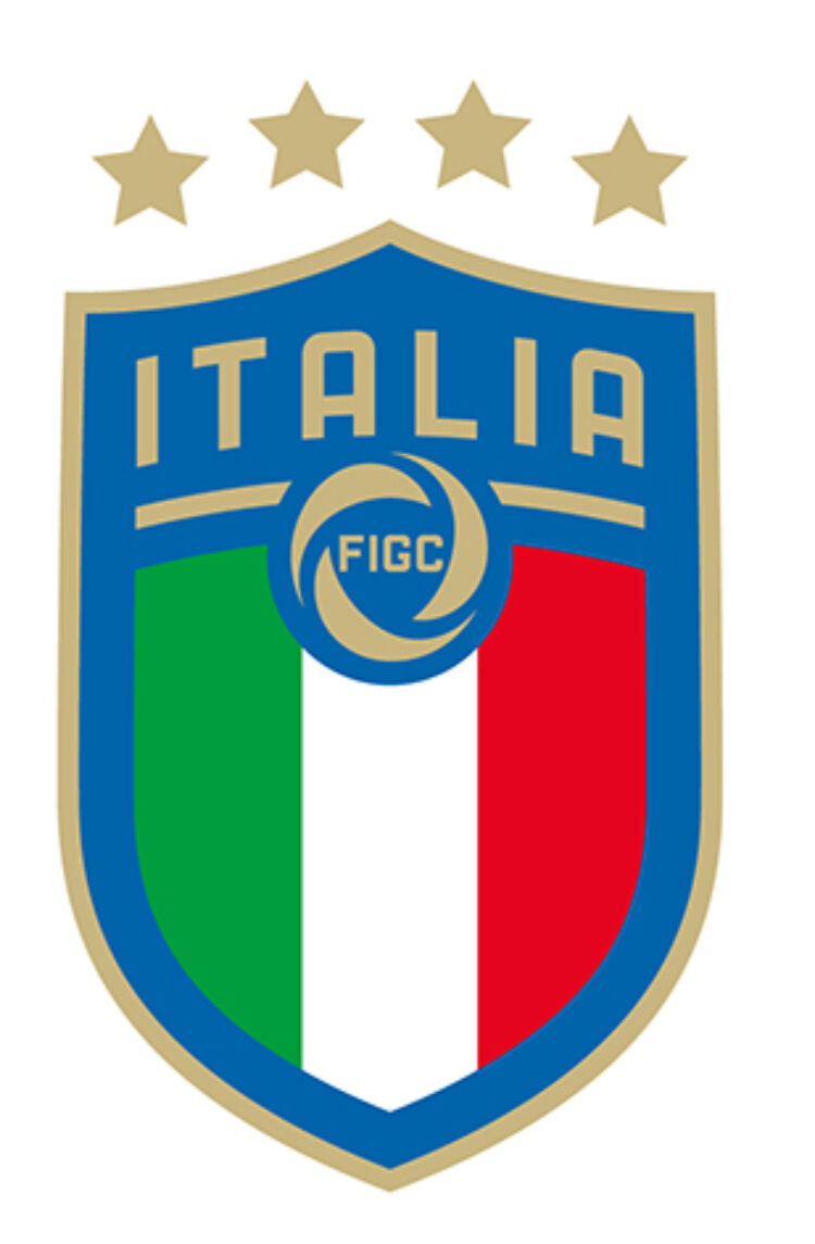 L'approccio FIGC: i principali requisiti relativi alle licenze UEFA e alle licenze  FIGC